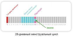 zaberemenet_vo_vremya_nezashhishhennogo_akta_pri_mesyachnyx_3